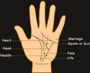 Palmistry- Lines for PALM READING: Palmistry